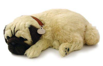 Pug Perfect Petzzz Breathing Dog