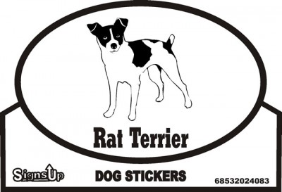 Rat Terrier Bumper Sticker