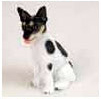 Locate Rat Terrier Gifts & Merchandise