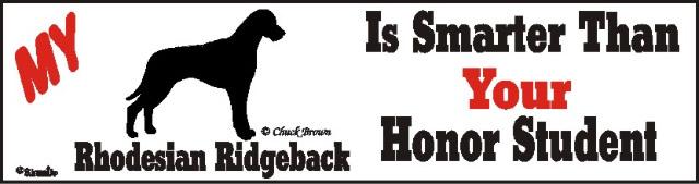 Rhodesian Ridgeback Dog Smarter Than Honor Bumper Sticker