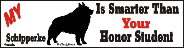 Schipperke Smart Dog Bumper Sticker