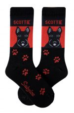 Scottish Terrier Socks - Black and Red in Color