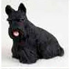 Browse Scottish Terrier Gifts & Merchandise