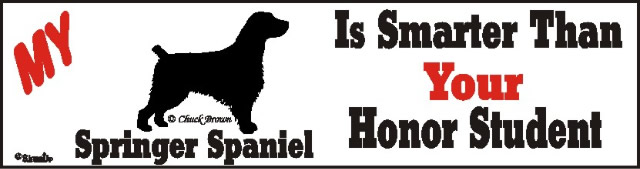 Springer Spaniel Dog Smarter Than Honor Bumper Sticker