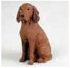 Find Vizsla Gifts & Merchandise
