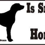 Weimaraner Smart Dog Bumper Sticker 1