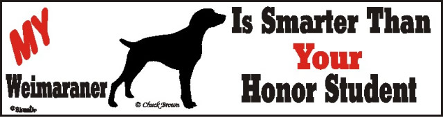 Weimaraner Smart Dog Bumper Sticker