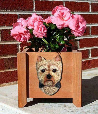 Yorkie(puppy)-Planter