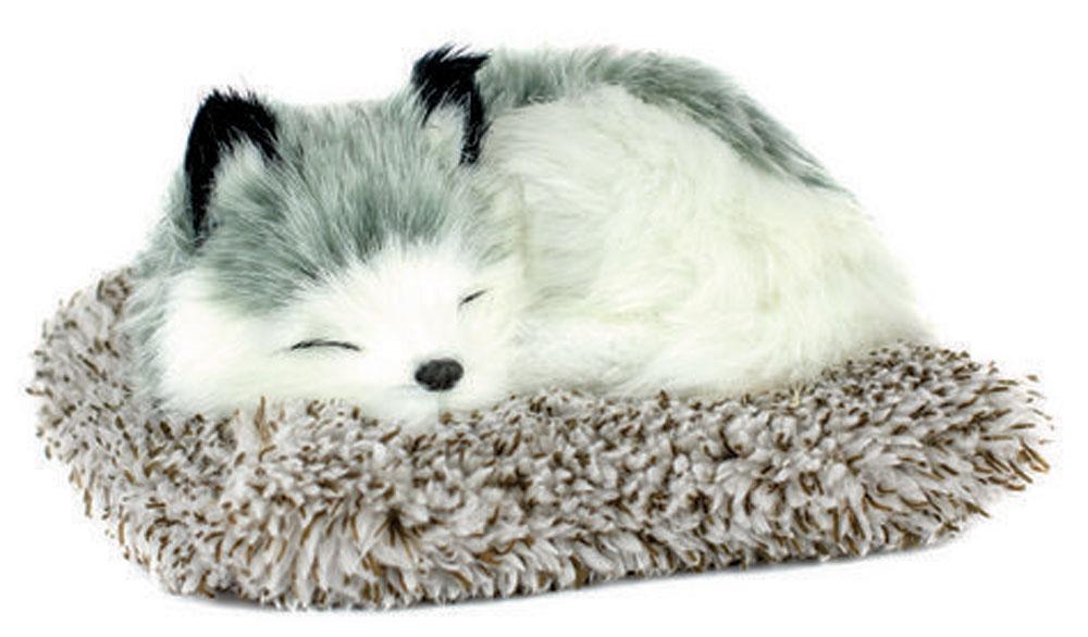 Alaskan Husky Perfect Petzzz Mini