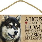 Alaskan Malamute Sign – A House is Not a Home Without A Dog + Bonus Coaster 1