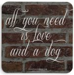 All You Need is Love and a Dog Coasters