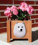American Eskimo Planter Flower Pot