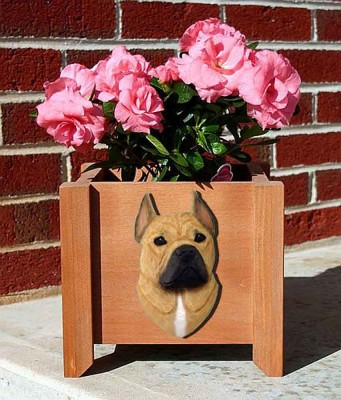 American Staffordshire Planter Flower Pot Fawn