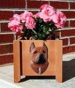 American Staffordshire Planter Flower Pot Red