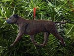 American Staffordshire Terrier Ornament Brindle