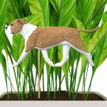 american-staffordshire-terrier-uncropped-fawn-white-planter-stake