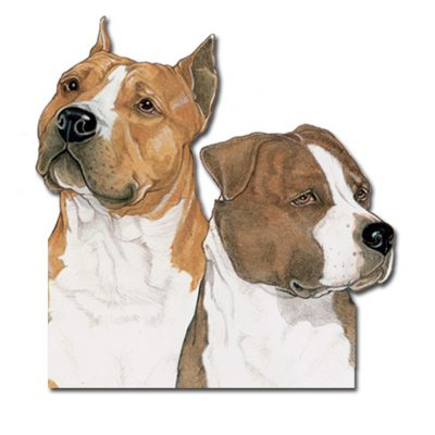 american-staffordshire-terrier-wood-magnet
