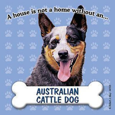 australian-cattle-dog-house-is-not-a-home-magnet