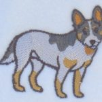 australian-cattle-dog-scarf-close-up