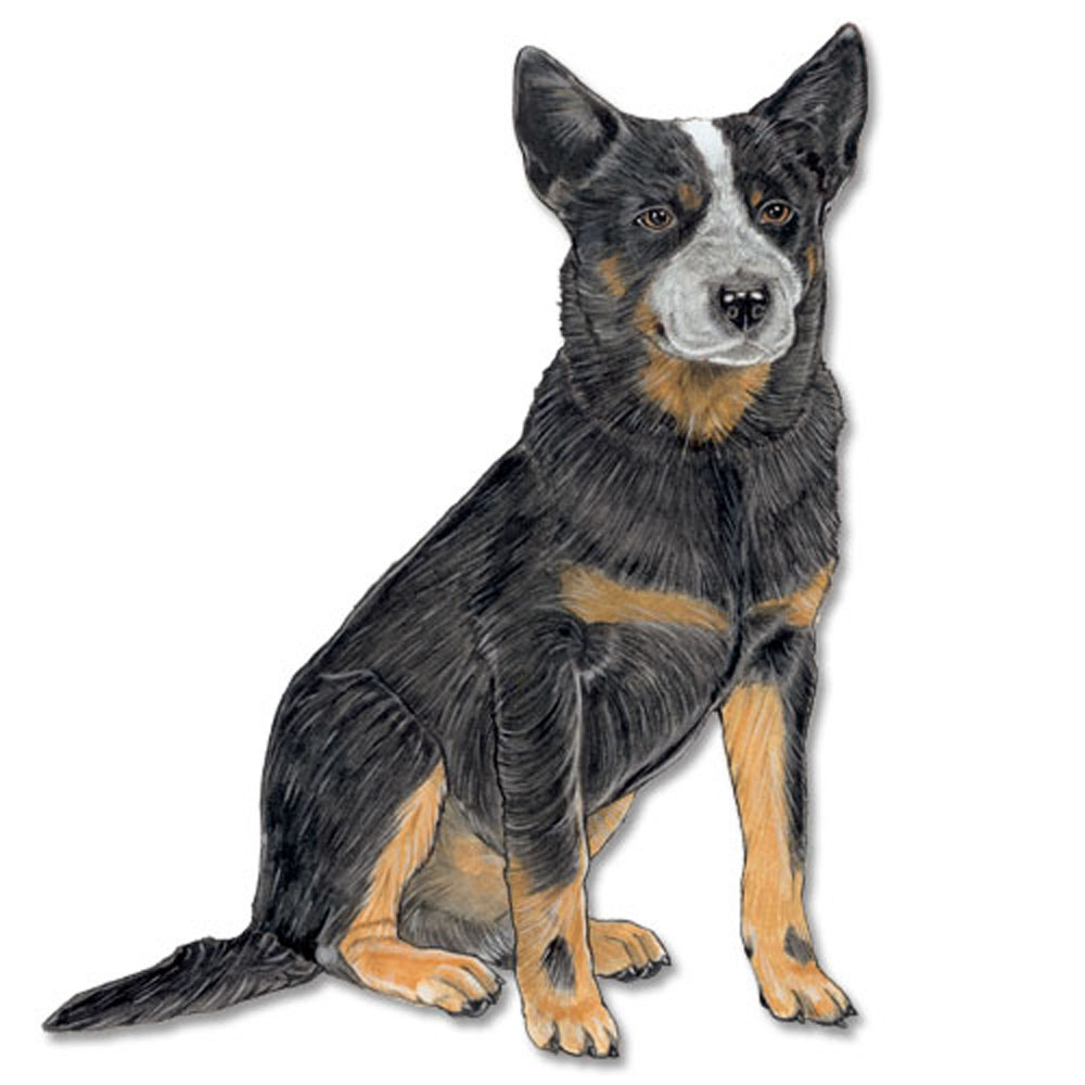 Australian Cattle Dog Wooden Magnet Blue