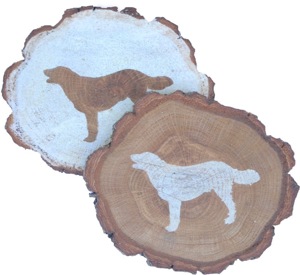 australian-shepherd-coasters-wood