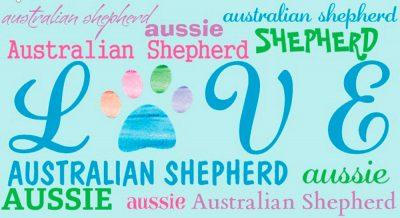 australian-shepherd-house-made-magnets