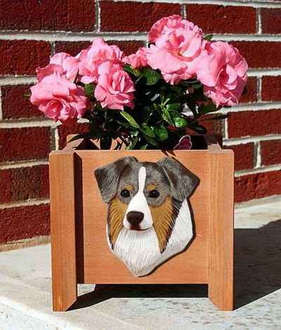 Australian Shepherd Planter Flower Pot Red Merle 1