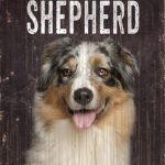 Australian Shepherd Sign – I Love My 5×10 1