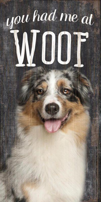 Australian Shepherd Sign – You Had me at WOOF 5×10 1