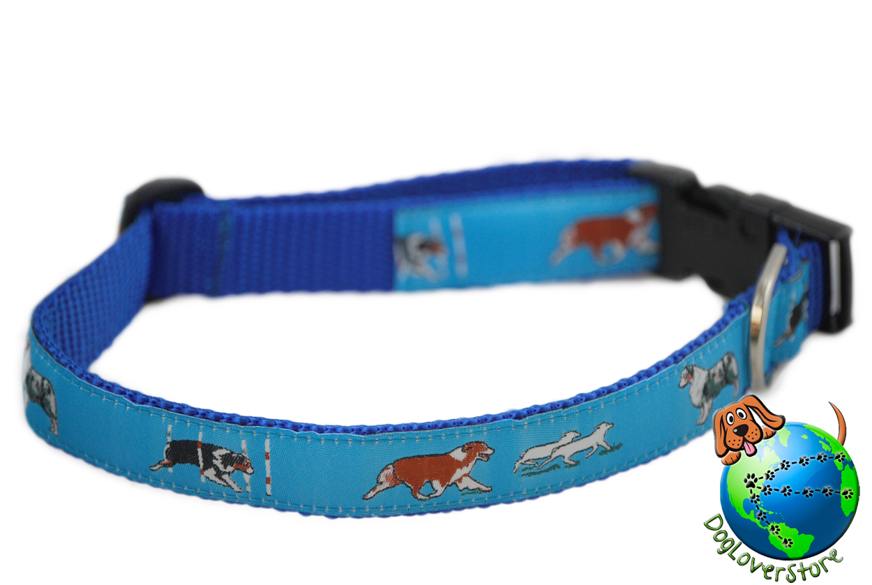 Australian Shepherd Collar - Adjustable Nylon