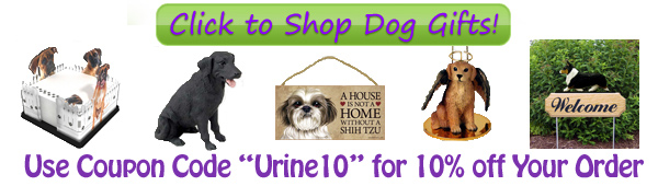 Dog Urine Color Banner