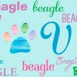 beagle-house-made-magnets