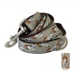 beagle-leash