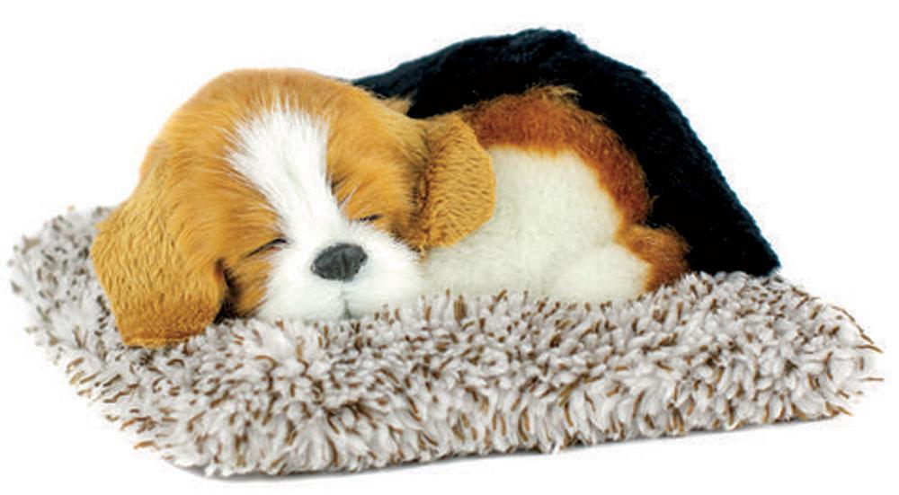 Beagle Perfect Petzzz Mini