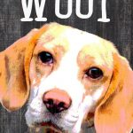 Beagle Sign – You Had me at WOOF 5×10 1