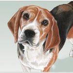 Beagle Cutting Board Tempered Glass 1