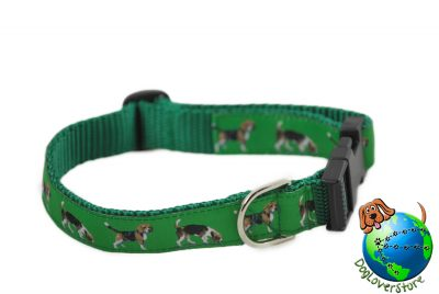 Beagle Dog Collars