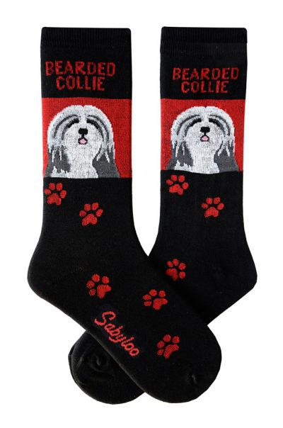 Bearded Collie Socks on Red Background