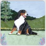 Bernese Mountain Dog Yard Scene Coasters Set of 4