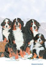 Bernese Mountain Dog Garden Flag 12.5 x 18 in