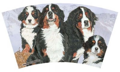 Bernese Mountain Dog Tumbler With Straw Design