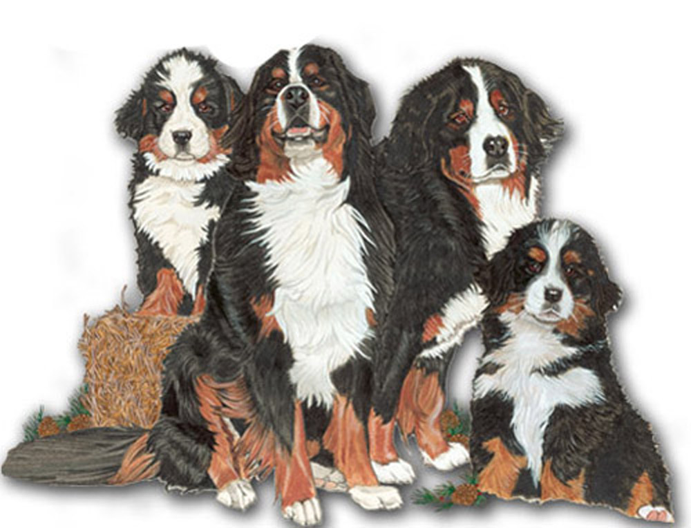 Bernese Mountain Dog Wooden Magnet