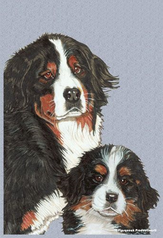 Bernese Garden Flag