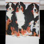 Bernese Mountain Dog Kitchen Hand Towel 2