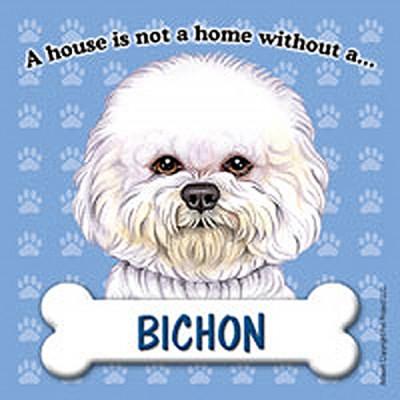 Bichon Frise Dog Magnet