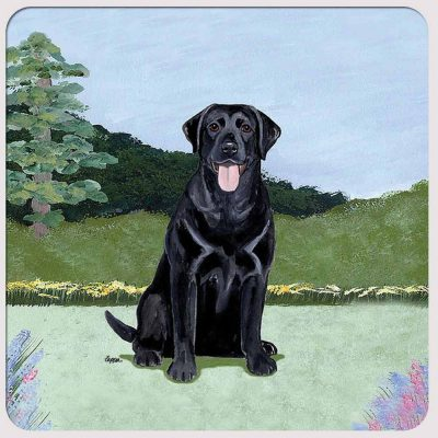 black-labrador-coaster-yard-scene