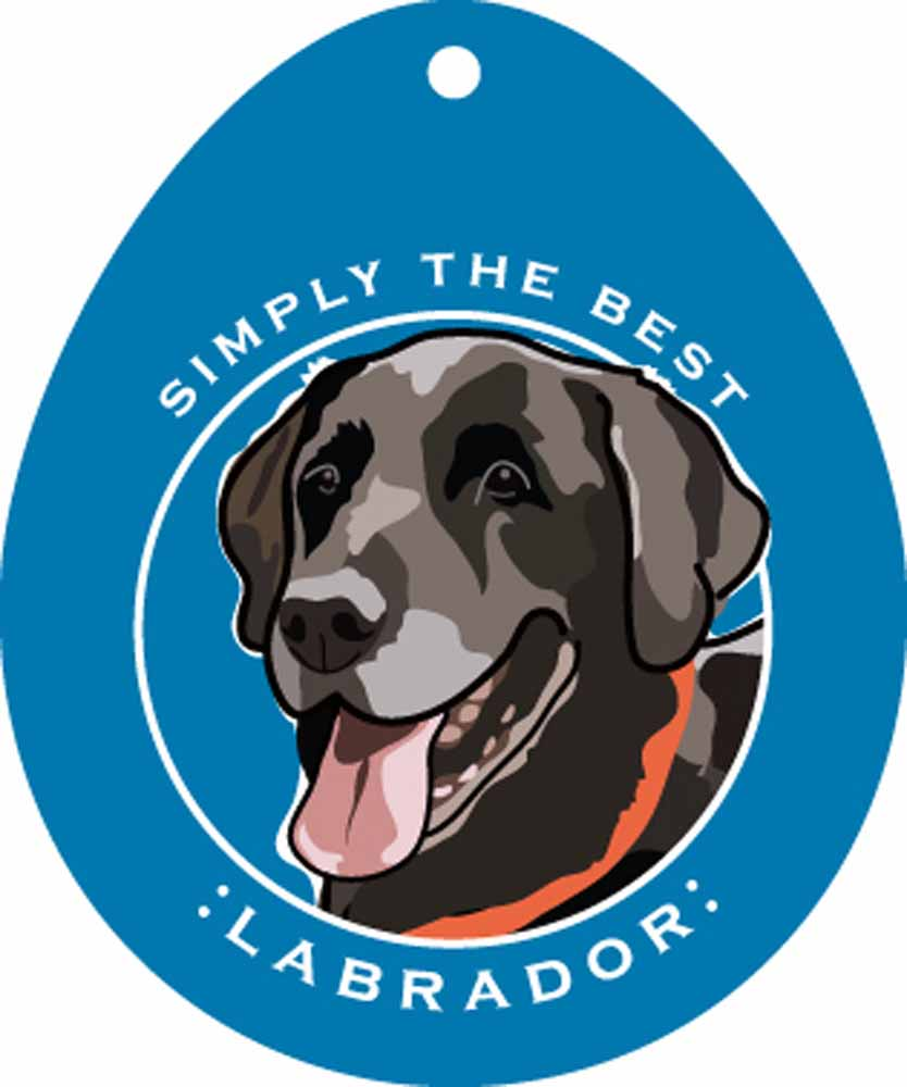 Black Labrador Sticker 4x4""