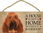 Bloodhound Wood Dog Sign Wall Plaque Photo Display 5 x 10 - A House Is Not A Hom + Bonus Coaster