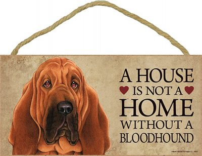 Bloodhound Wood Dog Sign Wall Plaque Photo Display 5 x 10 – A House Is Not A Hom + Bonus Coaster 1