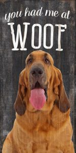 Bloodhound Sign - You Had me at WOOF 5x10